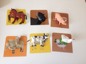 animalcards