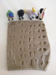 Aus bird footprints
