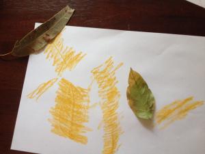 leafrubbing