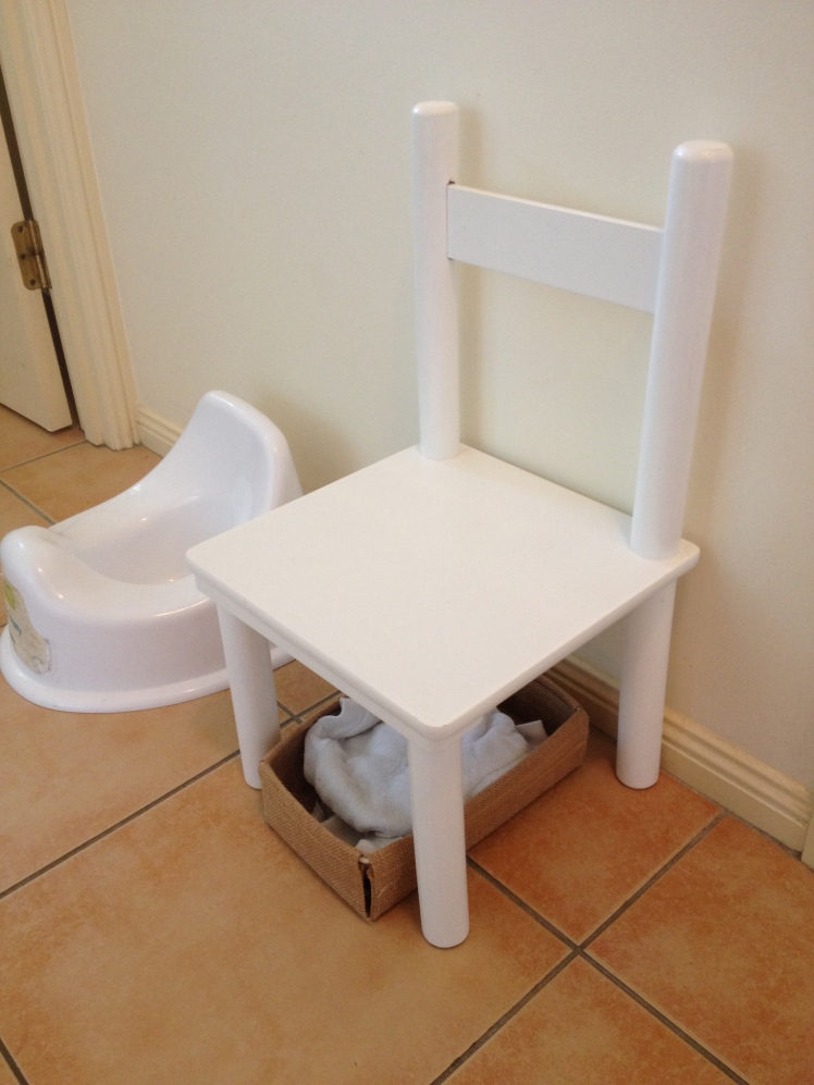 Toilet Learning Station