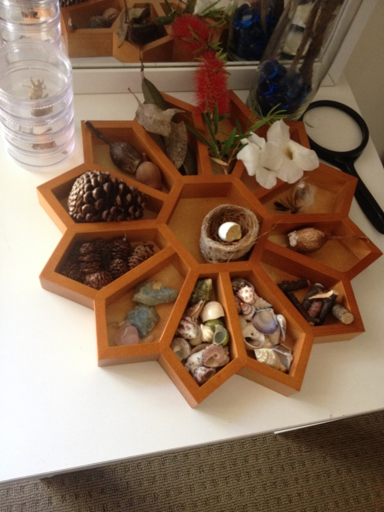 Nature Table display