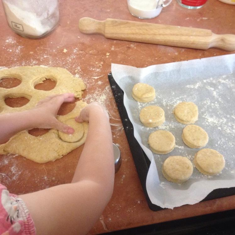 scone cutter