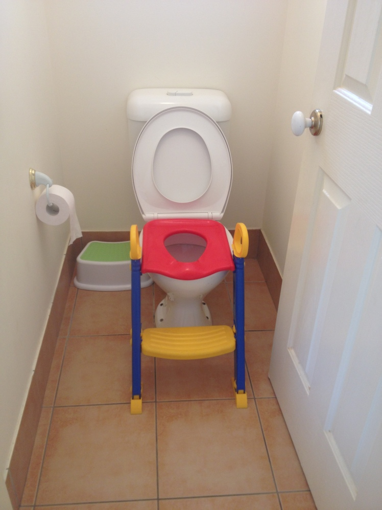 toilet step