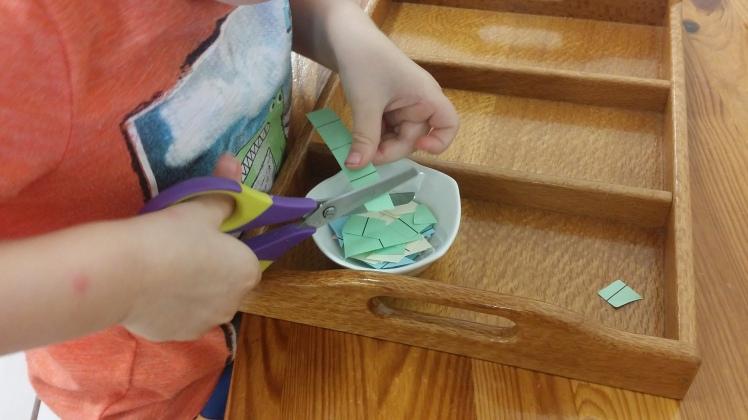 scissor-cutting-practice