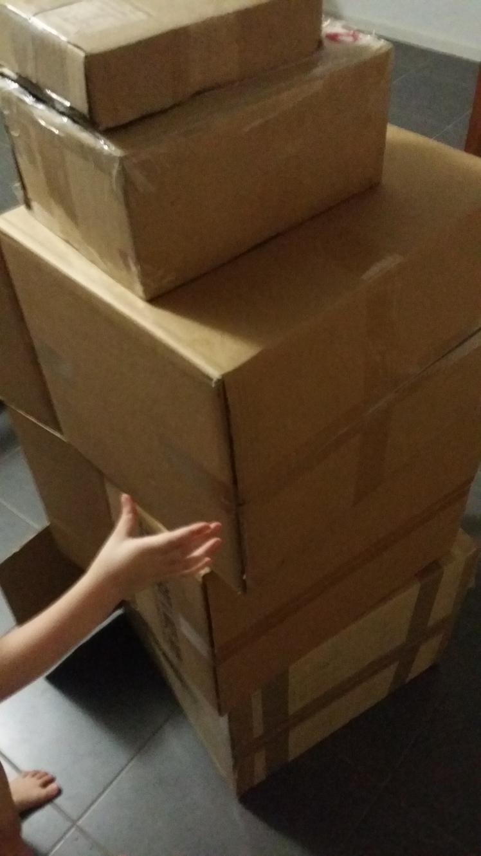 box-building