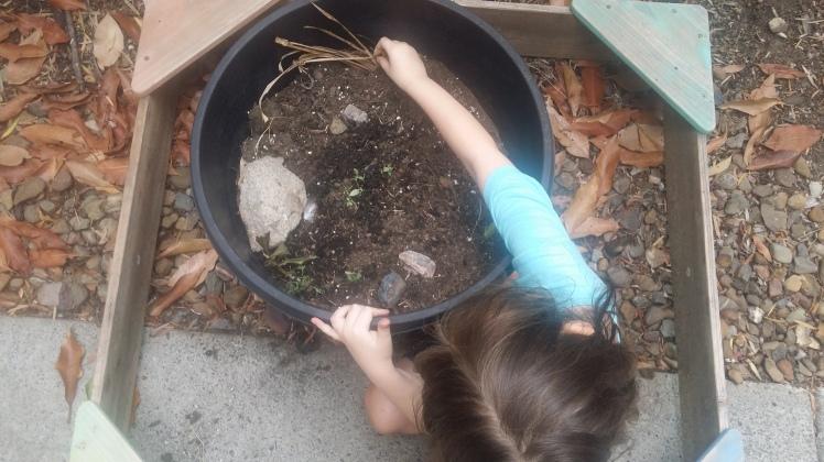 creating-a-fairy-garden