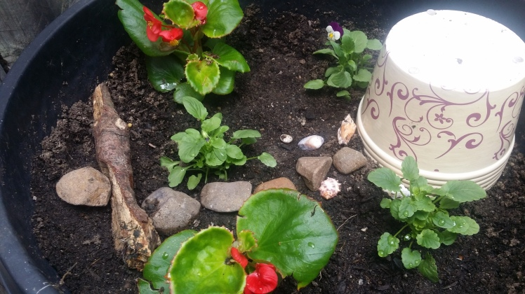 childrens potted fairy garden