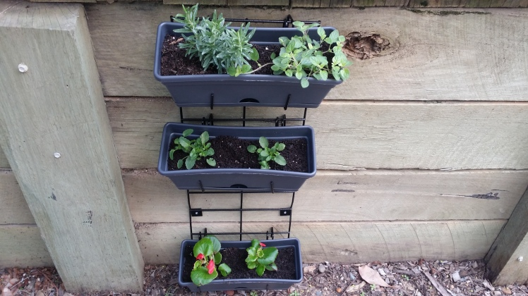 children's vertical garden