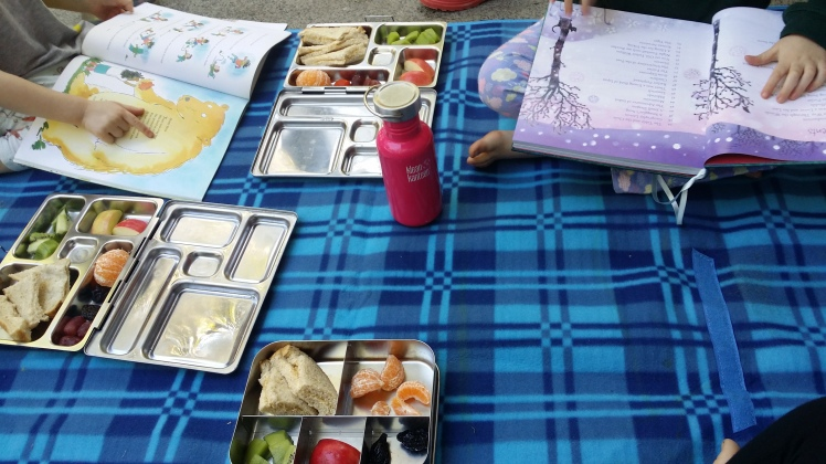 poetry and picnic