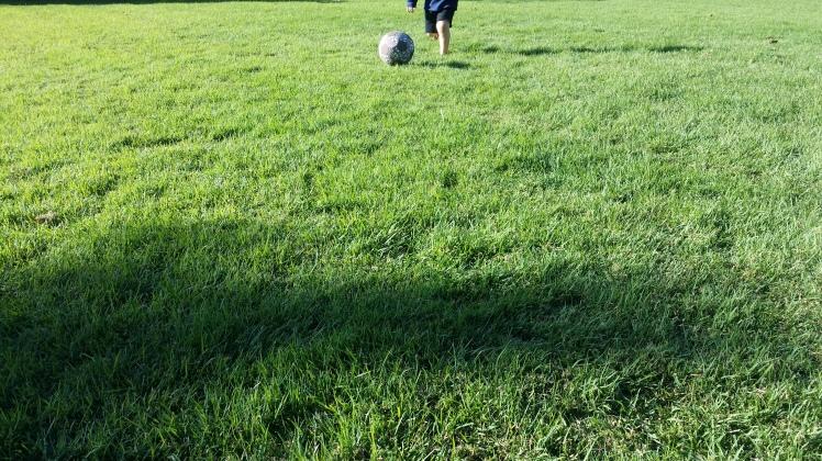soccer play at 3.5 years