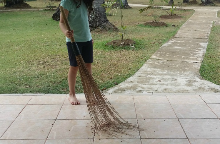 Fiji sweeping broom.jpg