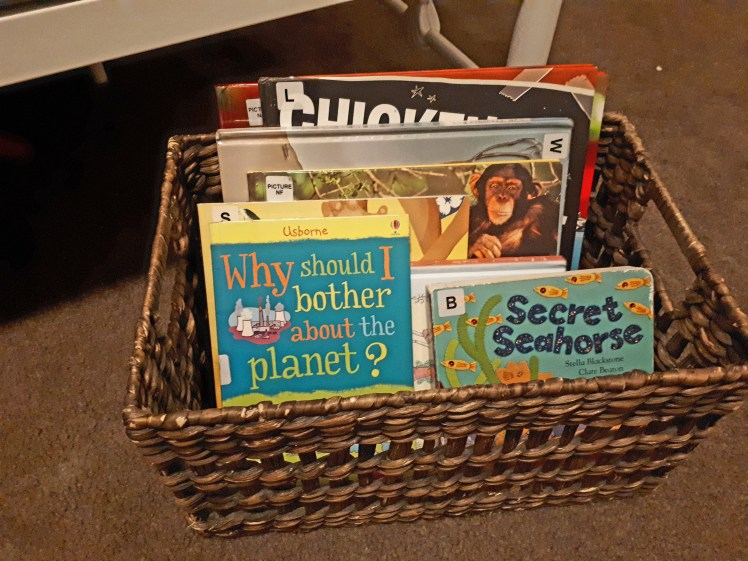 children's basket to hold library books.jpg