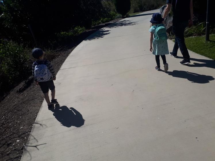 Fathers Day picnic walk