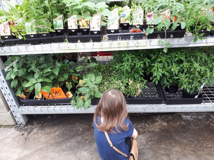 Exploring garden centres with children who love plants