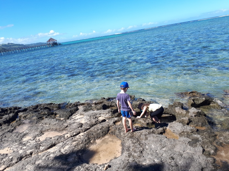 Fiji- exploring rockpools.jpg