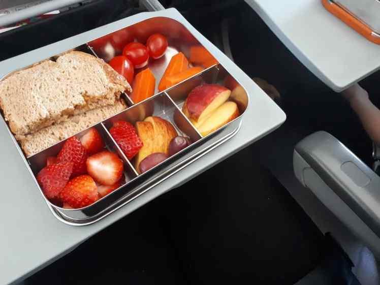 Vegan plane food