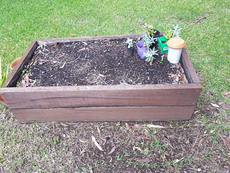 Childrens Garden- Garden box